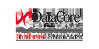 Logo für die DataCore Silver Partnerschaft