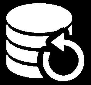 Icon für die Darstellung von Backup & Archivierung als Storage-Lösung im Bereich Projekte
